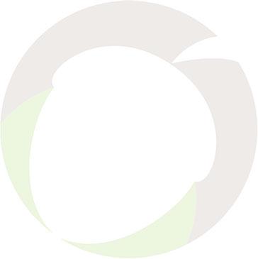 acorn icon faded