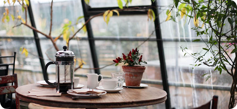 coffee press and cup on meeting table in solarium setting